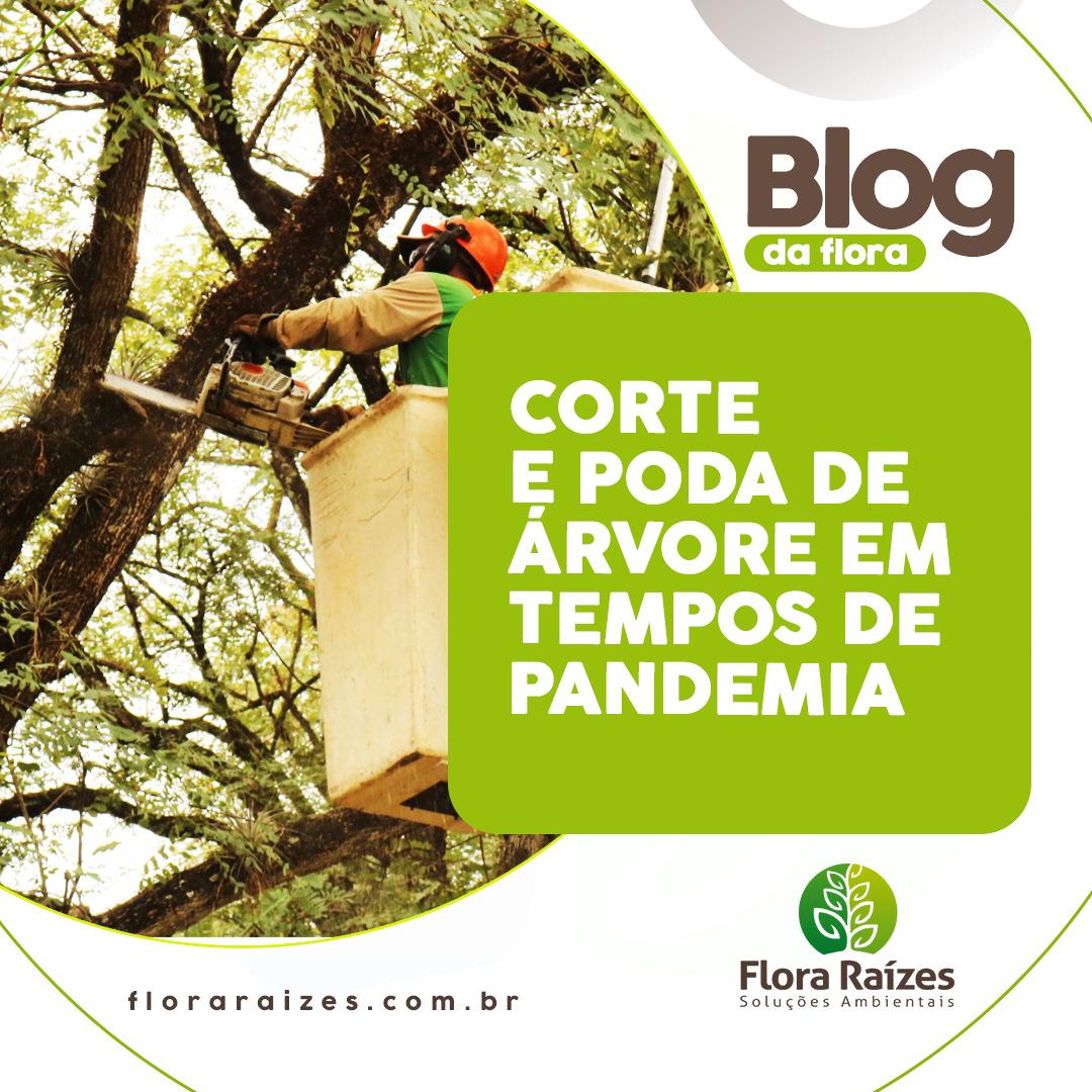 corte-e-podas-flora-raizes